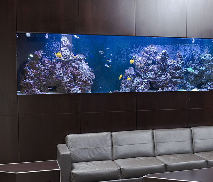 Custom aquarium in lobby of an office tower in Edmonton