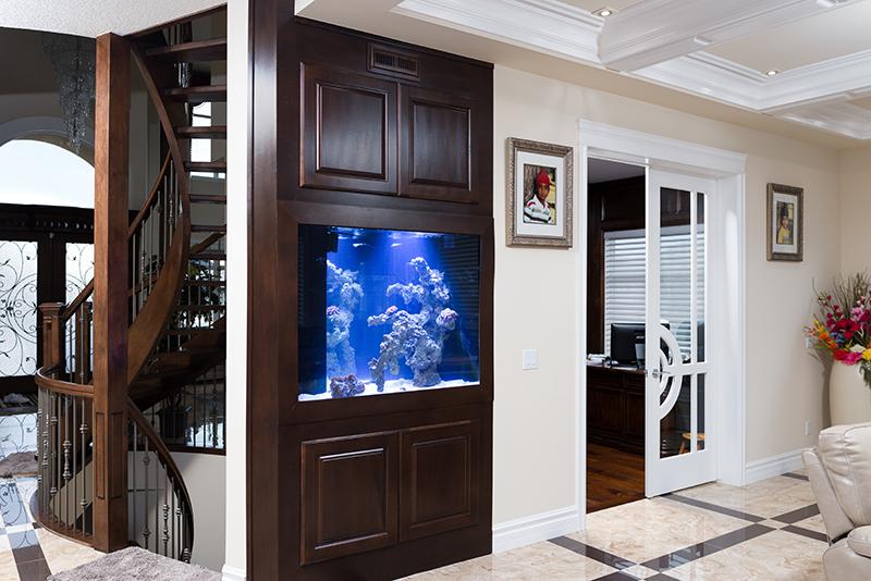 Large custom home aquarium under stairs